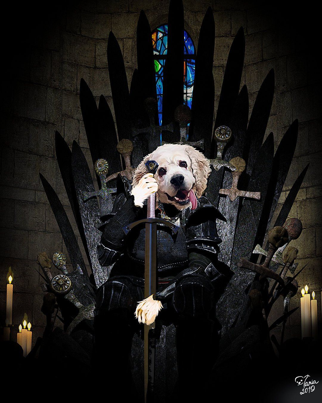 Game Of Thrones Dog Pictures