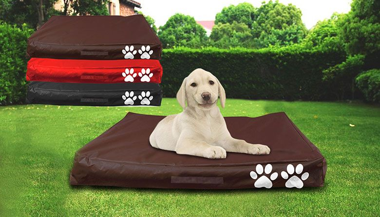 $19 for a Large Waterproof Pet Beanbag or $29 for Two. Choice of 3 Colours (Don't Pay $89.95).