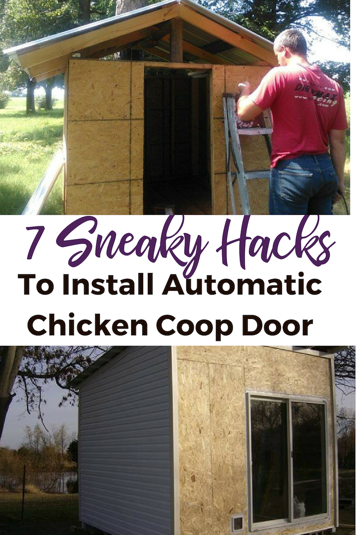 Love It These Hacks Are Genius And Will Make Installing An Automatic Chicken Coop Door So Much Easi Automatic Chicken Coop Door Chickens Backyard Chicken Coop