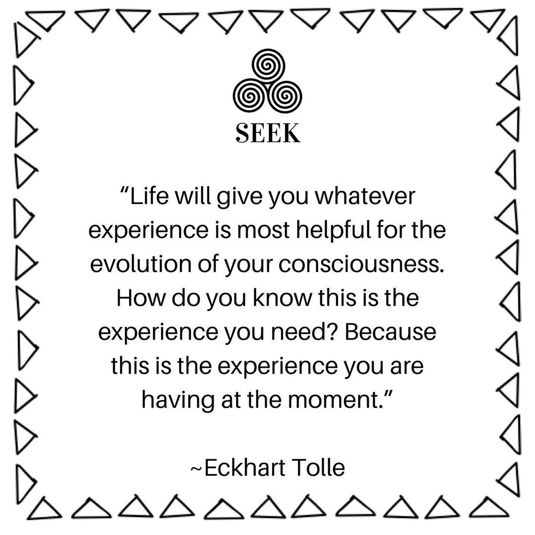 "SEEK Therapeutic Counselling on Instagram: ""Evolution can be challenging and even when we know it's crucial for our growth at all levels, we question it, we lament the sometimes…"" #wordstolivebylifelessons"