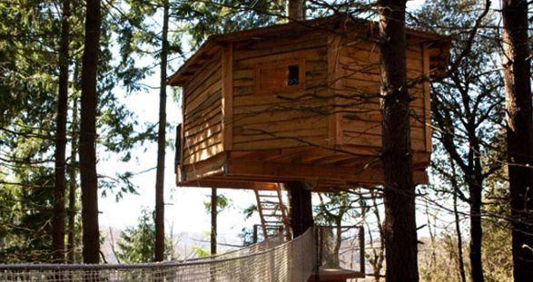 Verano Rushmore Cabañas Blog Camisas Rushmore Cabañas Cabaña Arbol Alojamiento Rural
