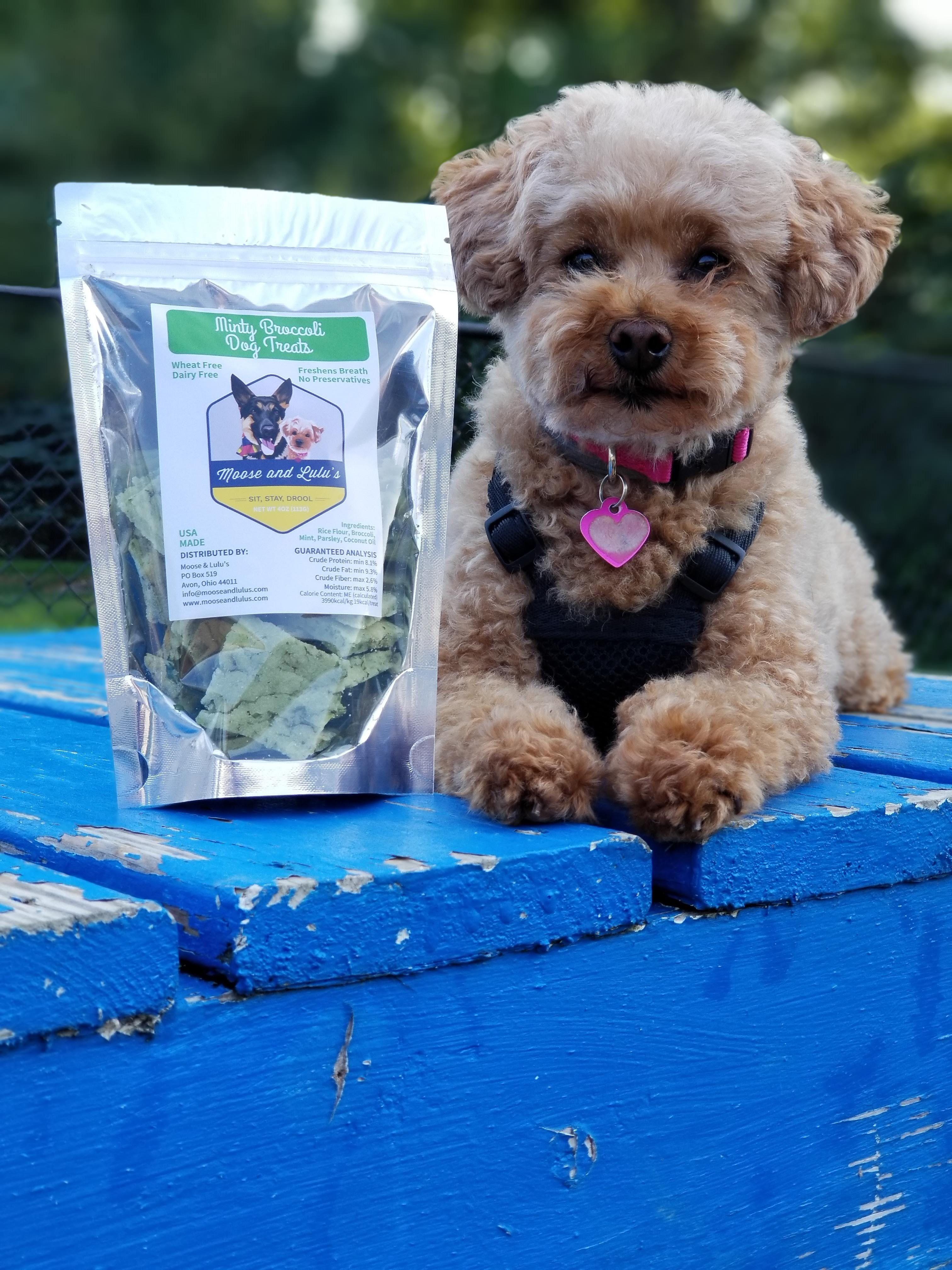 Minty Broccoli Dog Treats Dog Mom Gifts Homemade Dog Treats
