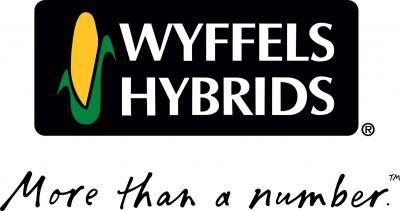 Wyffels Hybrids Gaming Logos Nintendo Wii Logo Logos