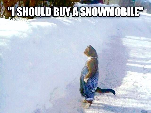 I should buy a snowmobile!