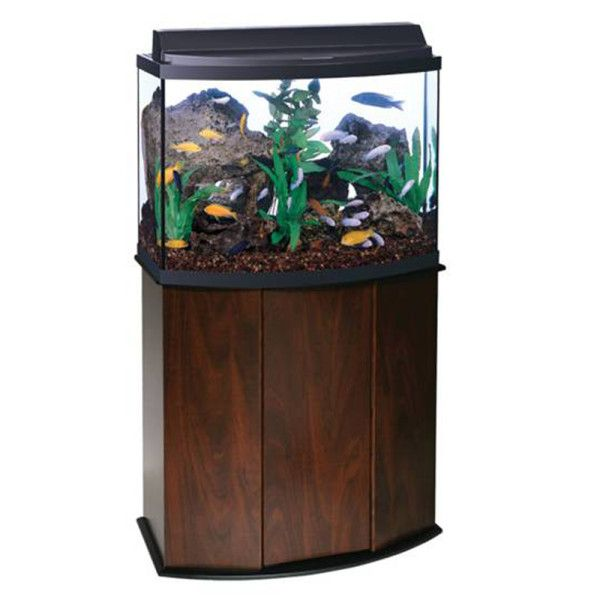 Aqueon 36 Gallon Bow Front Aquarium Ensemble Aquariums Petsmart Bow Front Aquarium Fish Tank Supplies Aquarium