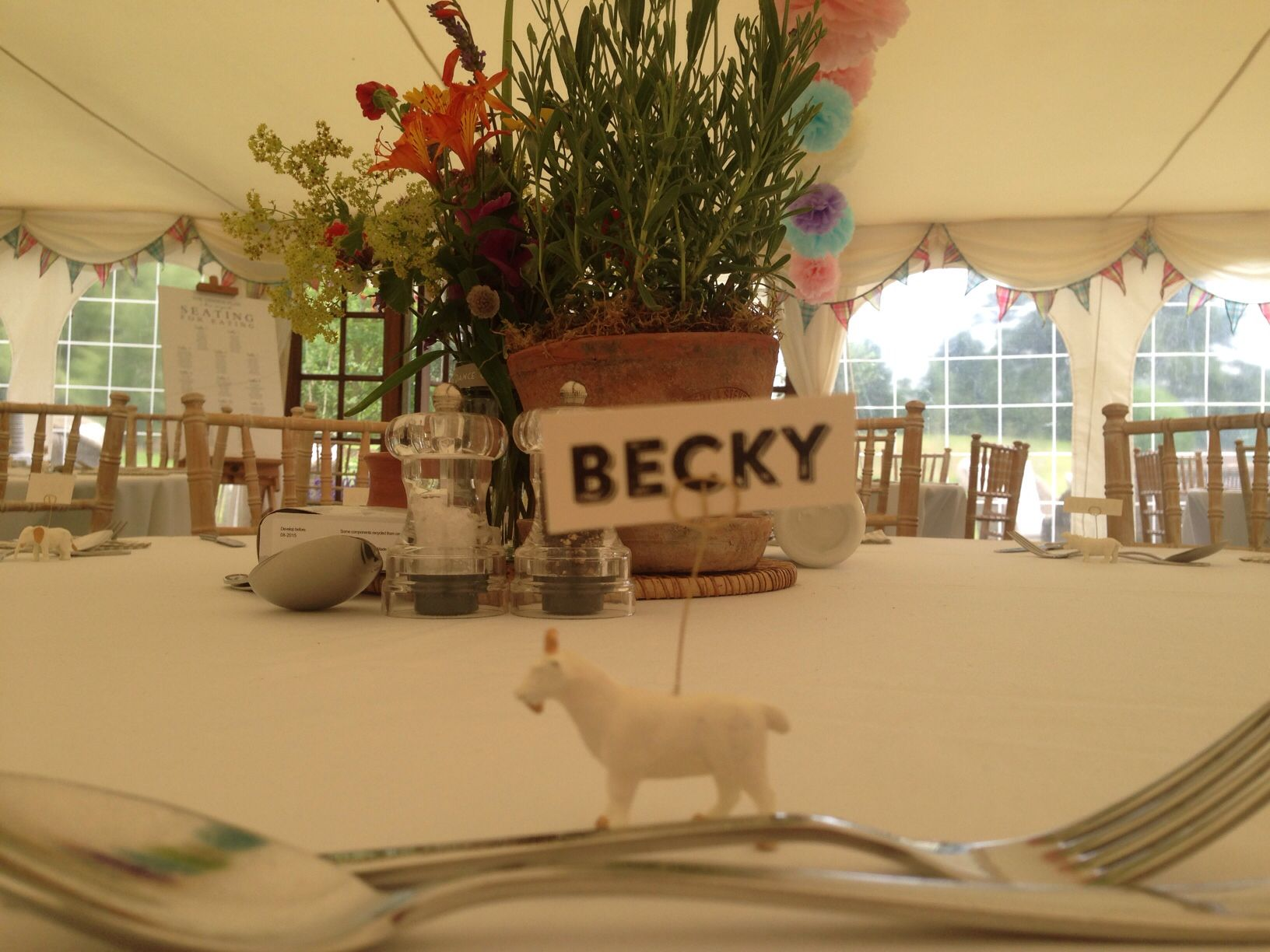 Beckys 21st Birthday Party