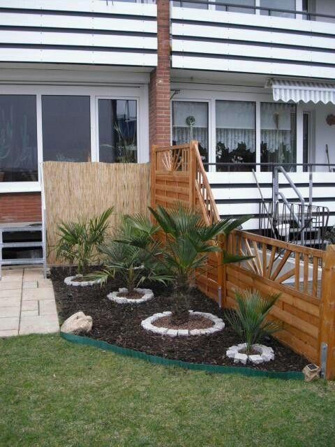Palmen Small Tropical Gardens Tropical Garden Outdoor Decor