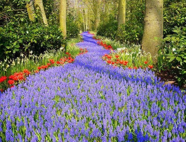 10 Most Beautiful Urban Parks On Earth Fleur Jardin Jardins Jolie Fleur