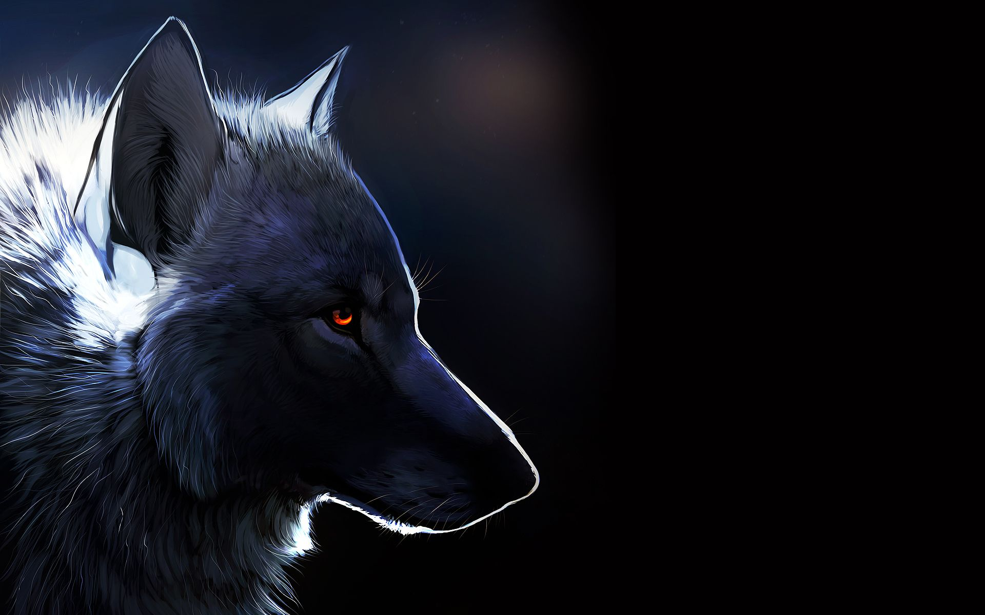 Black Background Wolf Amber Eyes Http Www Mindblowingpicture Com Wallpapers Amber Eyes Wpjfad95 Html Wolf Gatos Selvagens Cao Desenho