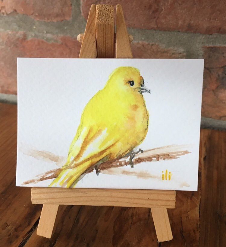Aceo Miniature Original Watercolor Painting Cute Yellow Canary