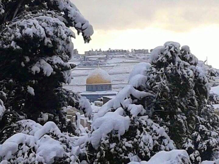 #Snow #Jerusalem #Palestine:  [ #Palestine - #Palestin - #Falasteen -#Falastine -#Falastin - #Filasteen -#Filastin -#Filastine - #Phalasteen -#Phalastine -#Phalastin - #Philasteen -#Philastin -#Philastine-#Philistine-#Philistin - #Philisteen   ]