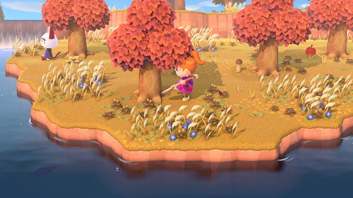 d9ca5f556c2ea698ea49a7b5622cebd2 - How To Get Golden Tools In Animal Crossing New Leaf
