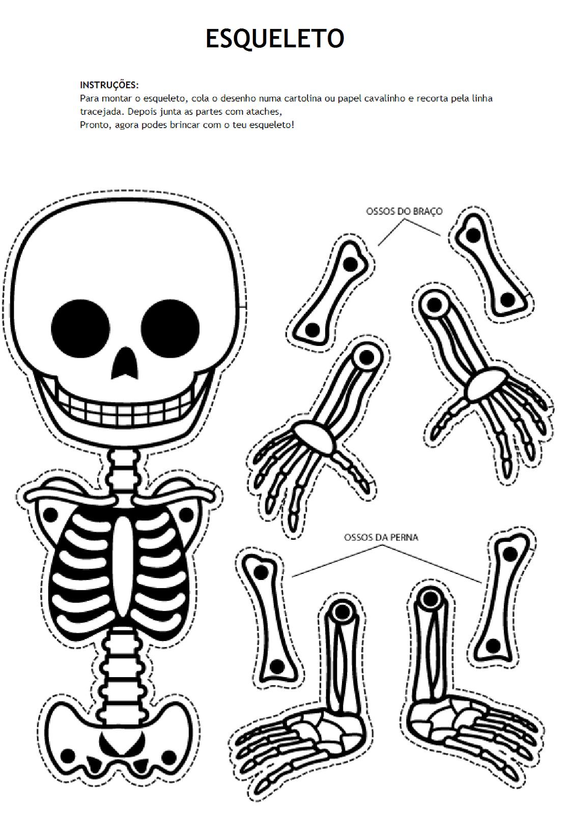 Esqueleto Png 1120 1600 Esqueleto Para Armar Esqueleto Humano Para Niños Arte De Halloween