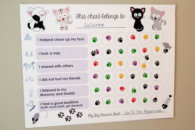 behavior chart ideas for 3 year olds: Playskool flash cards with reward stickers 4 sets of flash cards