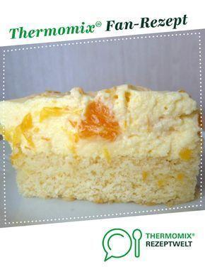 Schüttelkuchen von S64. Ein Thermomix ®️️ Rezept aus der Kategorie Backen süß auf www.rezeptwelt.de, der Thermomix ®️️ Community.