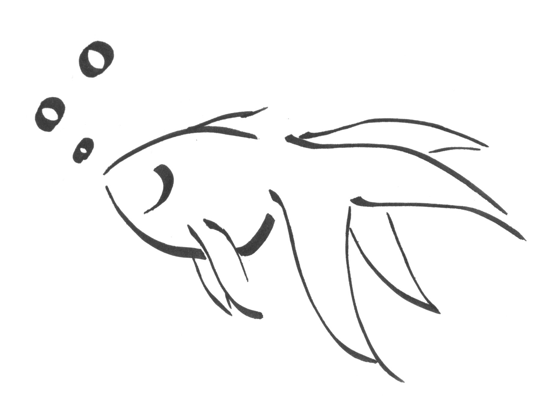 Calligraphy Goldfish By Kdragonfire8 Deviantart Com On Deviantart Art Drawings Simple Easy Drawings Outline Drawings