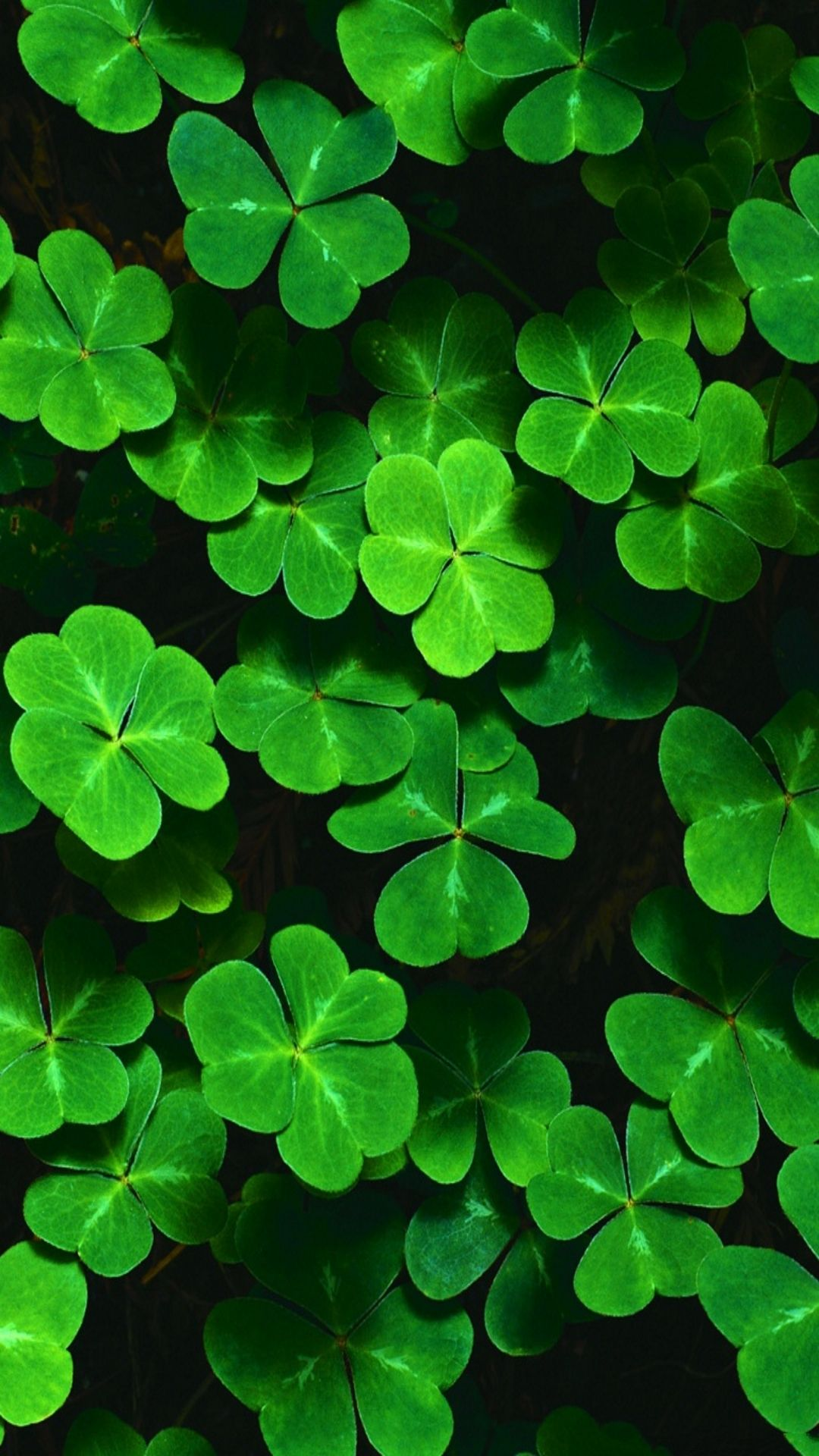 Cellphone Background Wallpaper For St Patricks Day