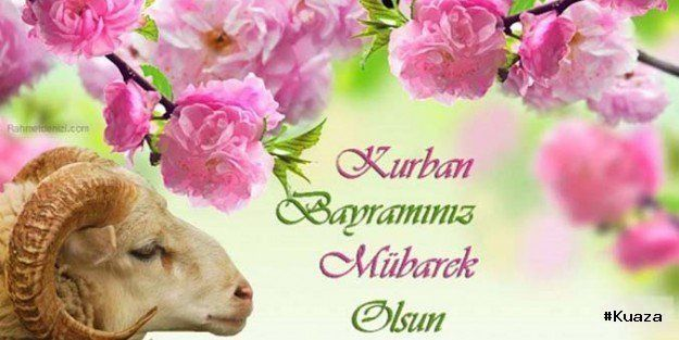 Resimli Kurban Bayrami Mesajlari 5 Kisabilgim Com Food Animals Qurban Teddy Bear