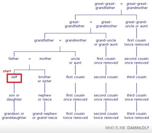 If You Ve Ever Wondered Family Tree Chart Genealogy Chart Family Tree