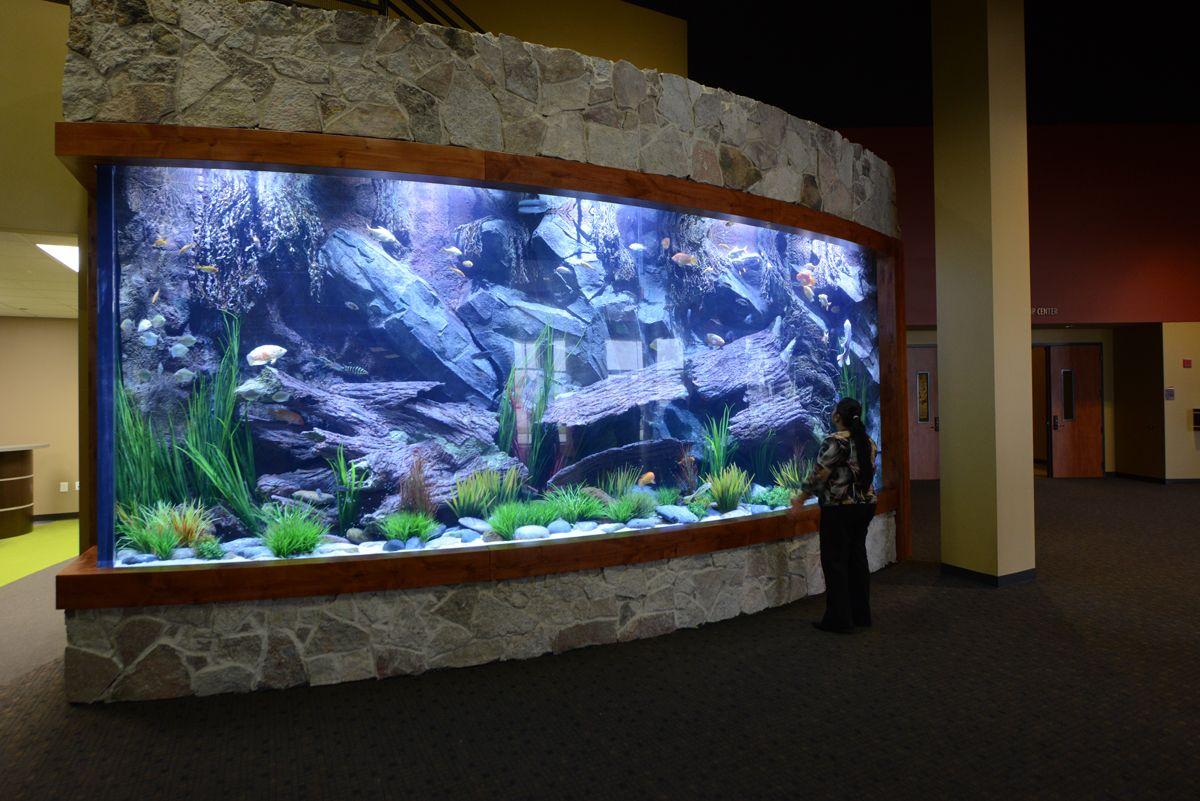 центре картинки с видами аквариумов это все очень