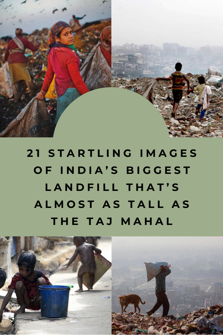 "New Funny Pins 21 Startling Images Of India's Biggest Landfill That's Almost As Tall As The Taj Mahal For the poor people living in the slums surrounding the Ghazipur landfill in New Delhi, ""this mountain of trash has made our lives hell."" 3"