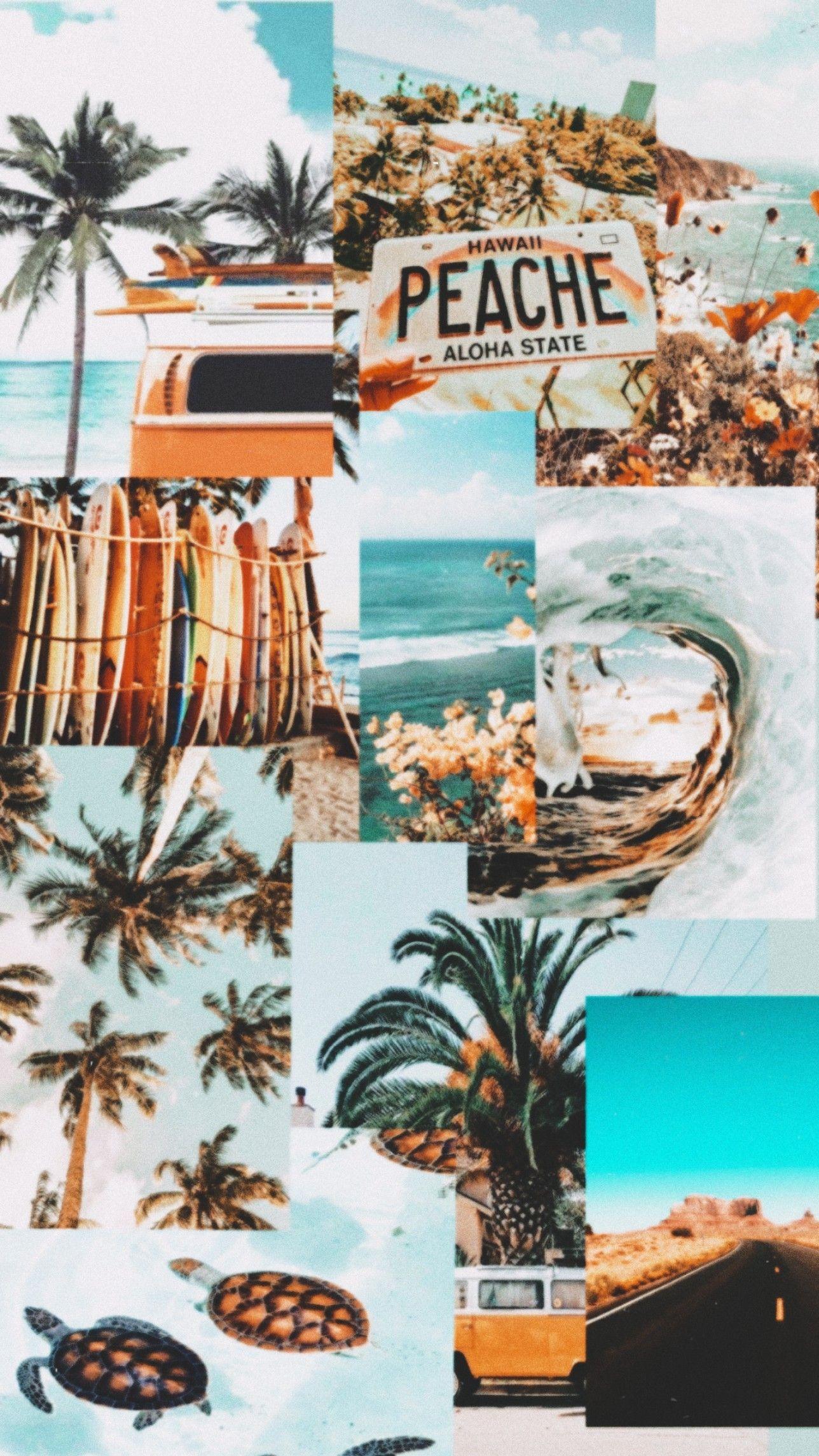 Summer Vibes Wallpaper Summer Wallpaper Wallpaper Summer Aesthetic