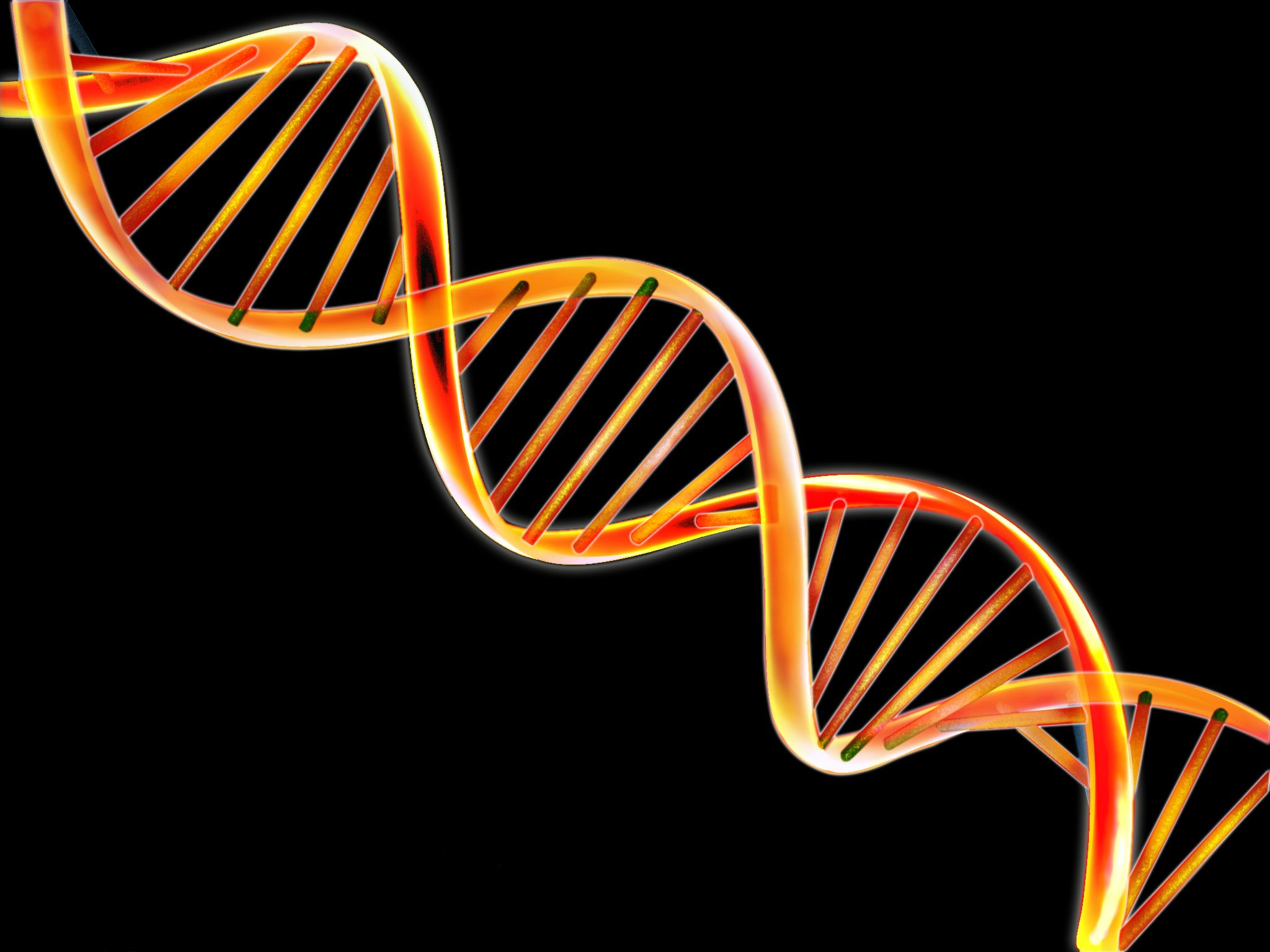 dna testing and bullying