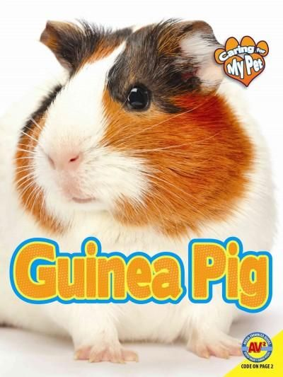 Pin on CRAZY FOR GUINEAS!
