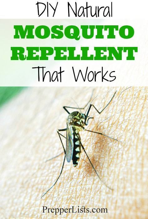 Diy Natural Mosquito Repellent Recipe That Works Natural