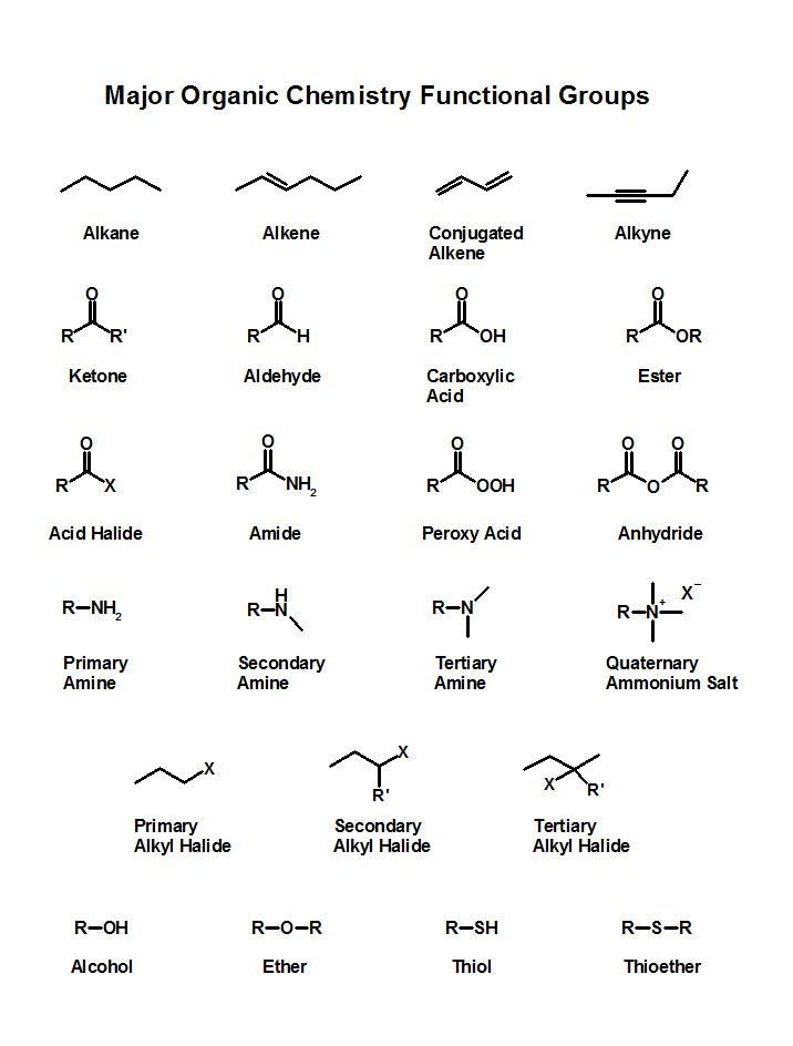 Major organic chemistry functional groups gamsat – Functional Group Worksheet