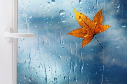 octubre otoño llubia - Buscar con Google