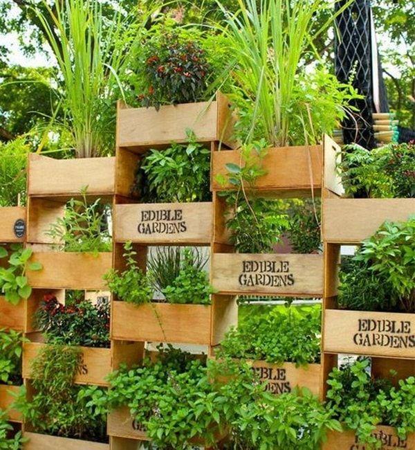 Jardín vertical con cajas de madera Decoracion de Jardines - decoracion de jardines