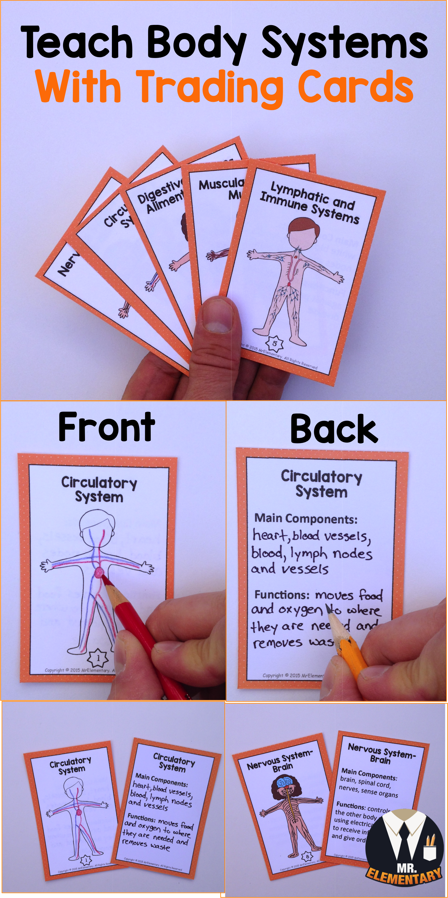 Teach The Body Systems With Trading Cards Students Draw