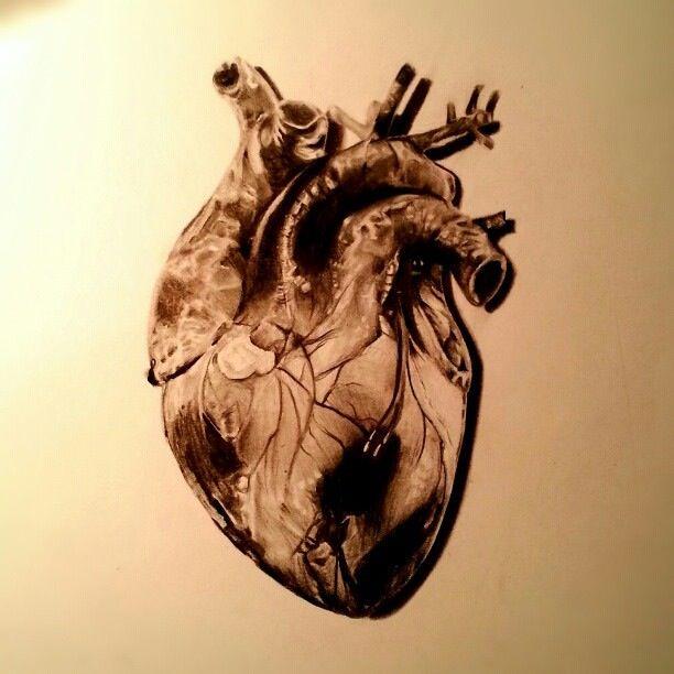 Heart #realistic #art #sketch | Art Inspiration | Art ...  Realistic