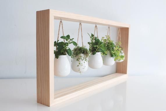 Photo of The green of these indoor grasses in this wooden frame wall bracket