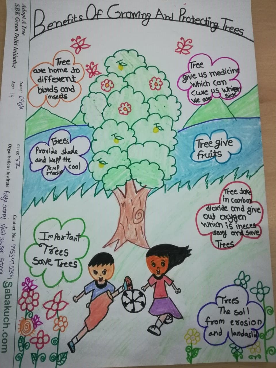 "We got some good ideas ""How can we save the trees"