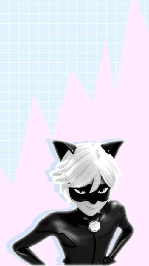 My Lady Chat Noir Wallpaper En 2019 Fondos De Ladybug