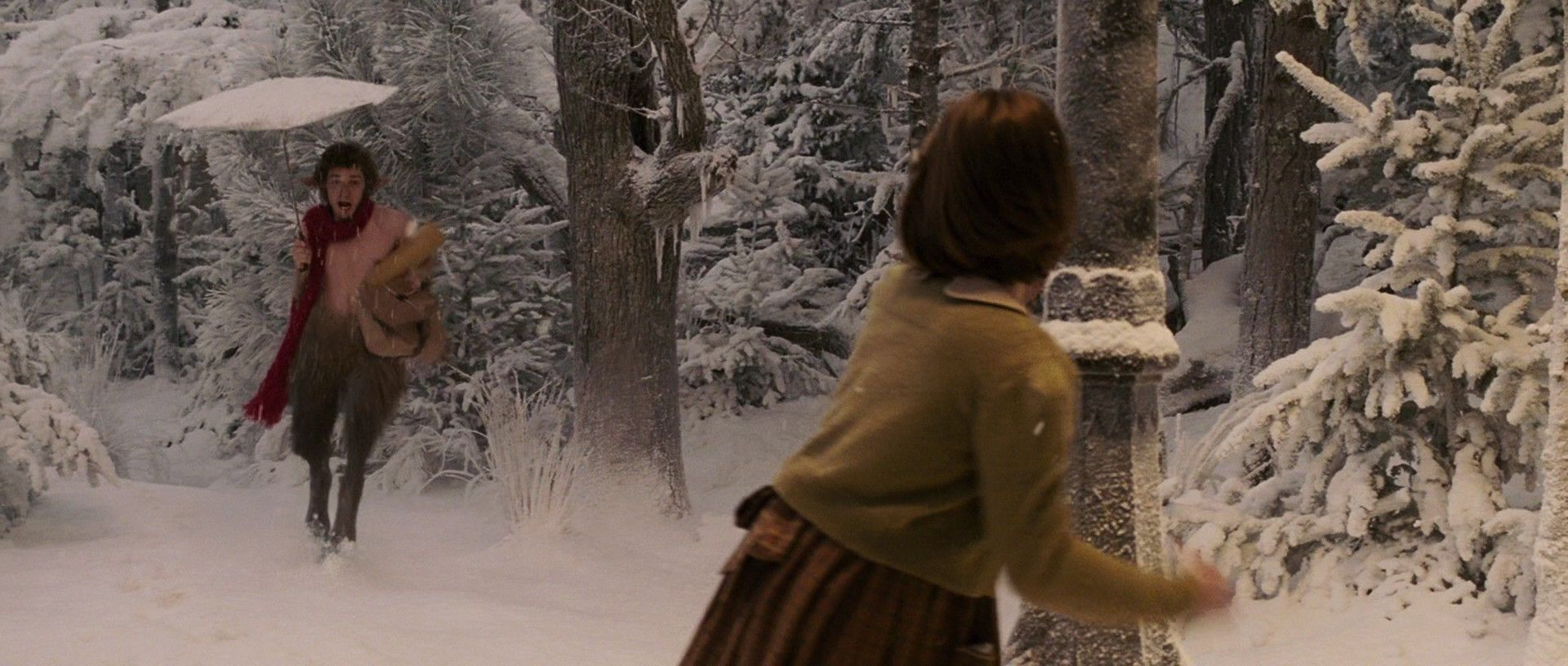 The-Chronicles-of-Narnia-The-Lion-The-Witch-The-Wardrobe-the ...