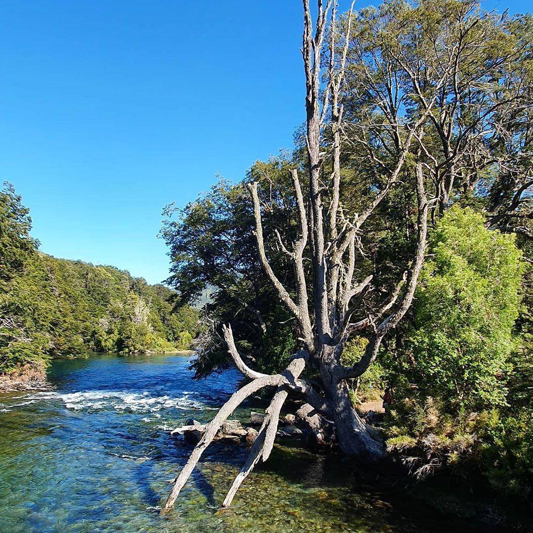 On the way to #tronador #relaxing in #losrapidos #riomanso #manso #river , #sunnyday #beautiful #naturaleza #nature  #water #travel #naturaltraveler