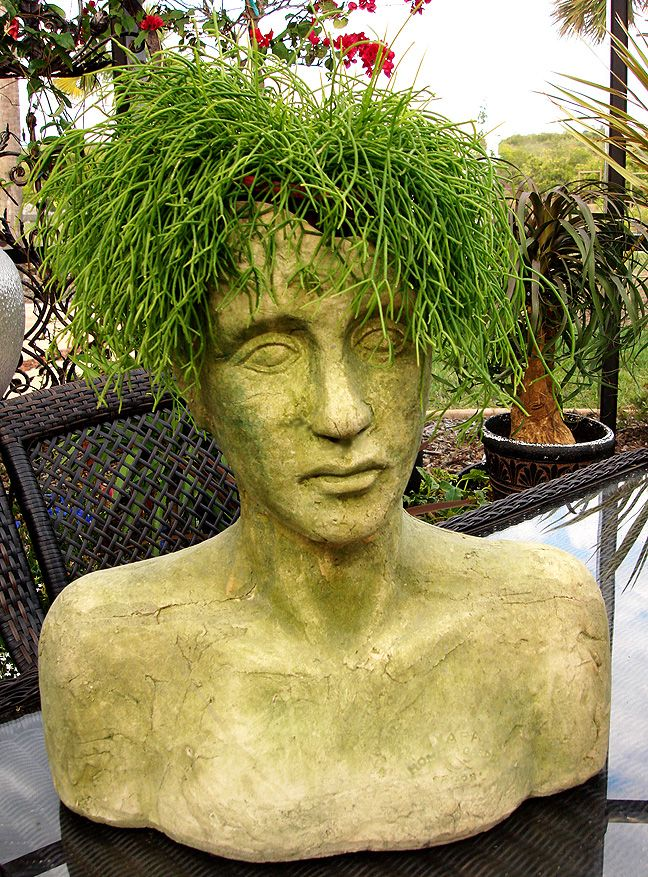 Etonnant The Empty Nester: A Journey: Making My Own Head Planters With Hypertufa