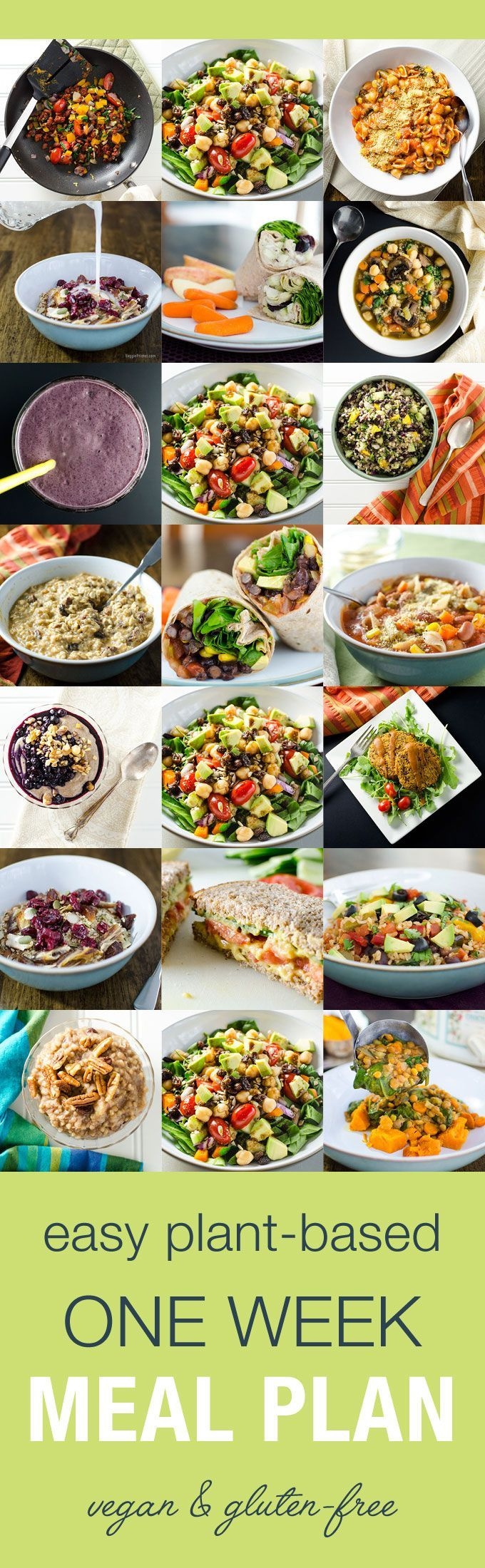 plant based balanced meal guide