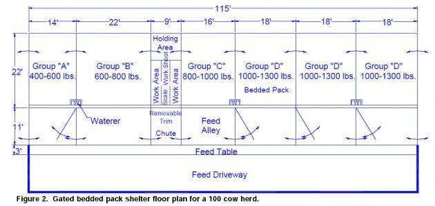 Adolescent Heifer Housing