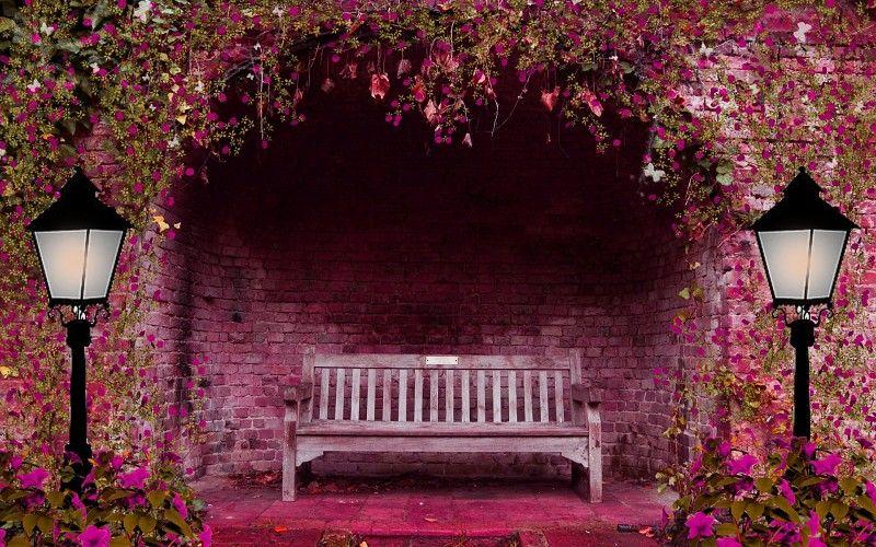 Primavera Las Flores Del Jardin Arco Banco De Luces De Color Rosa