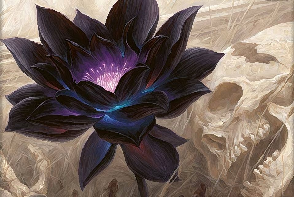 The Black Orchid of Death