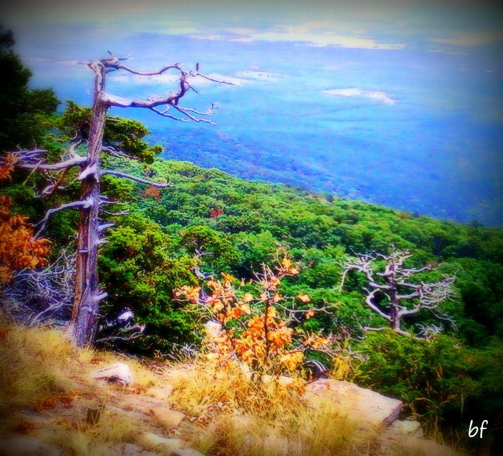 Mt Magazine State Park Arkansas 7.15.12 State parks