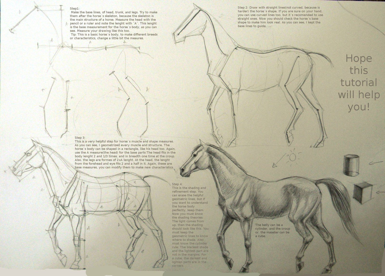 Horse drawing tutorial by winnetahiantart on deviantart horse drawing tutorial by winnetahiantart on deviantart ccuart Image collections