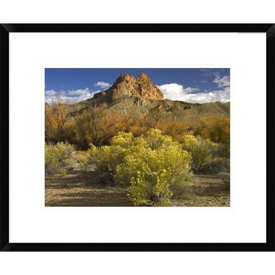 Global Gallery Mitten Rock, New Mexico by Tim Fitzharris Framed Photographic Print Size: