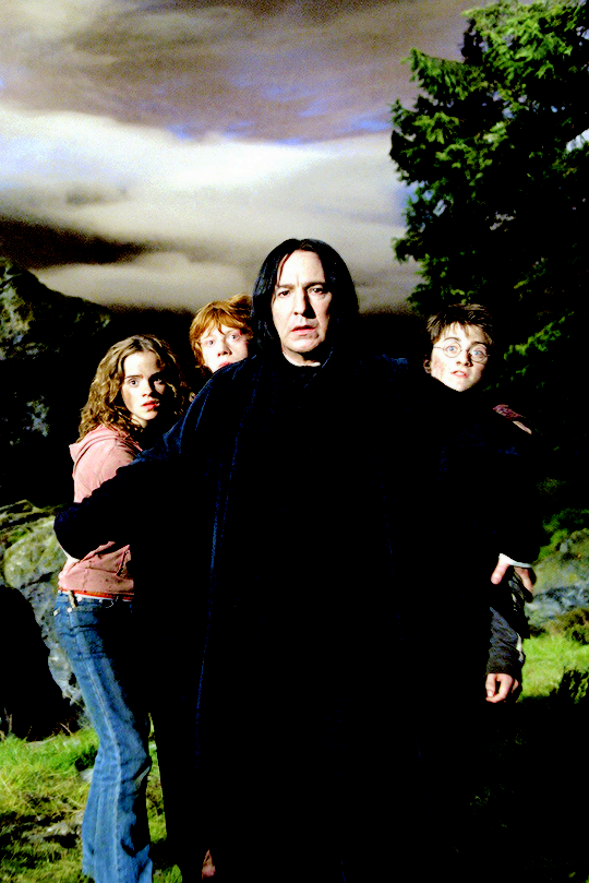 Even though I thought Snape was a jerk in this movie I thought it was cute how he protected the golden trio.