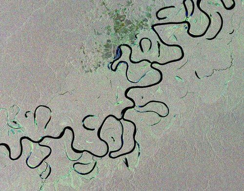 Rainforest river, Brazil - This image from the Envisat satellite shows the Juruá River snaking through the Amazon rainforest in western Brazil. Along the river's main course are free-standing 'oxbow lakes', formed when a river changes course.