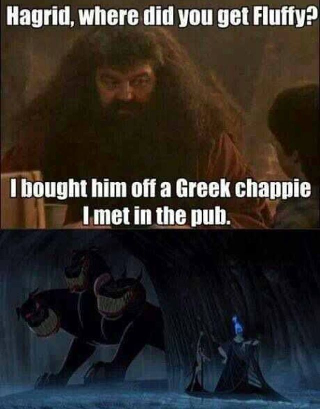 Hagrid Bought Fluffy From Hades Harry Potter Films Harry Potter Memes Harry Potter Jokes